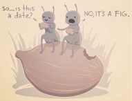 Joke - is this a date? No it's a fig.